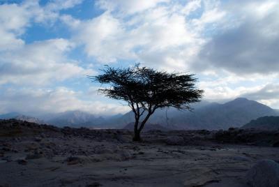 Die Umgebung von Hujayrat al-Ghuzlan
