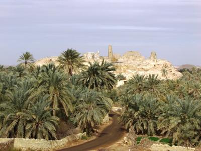 Das Ammoneion in der Oase Siwa von Umm Ubayda aus