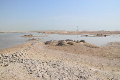 Umm el-Houl (Katar). Überflutete Überreste der Stadtmauer aus der früheren Phase