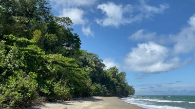 Die Karibikküste von Honduras