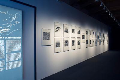 Blick in die Ausstellung Blick-Mira 2
