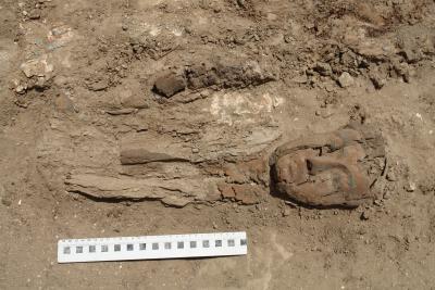Überreste eines Holzsarges der 21. Dynastie